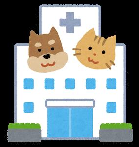 犬の治療費